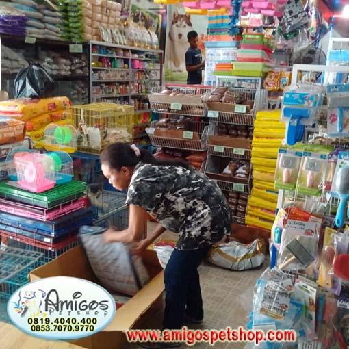 Toko Offline Amigos Petshop Makassar