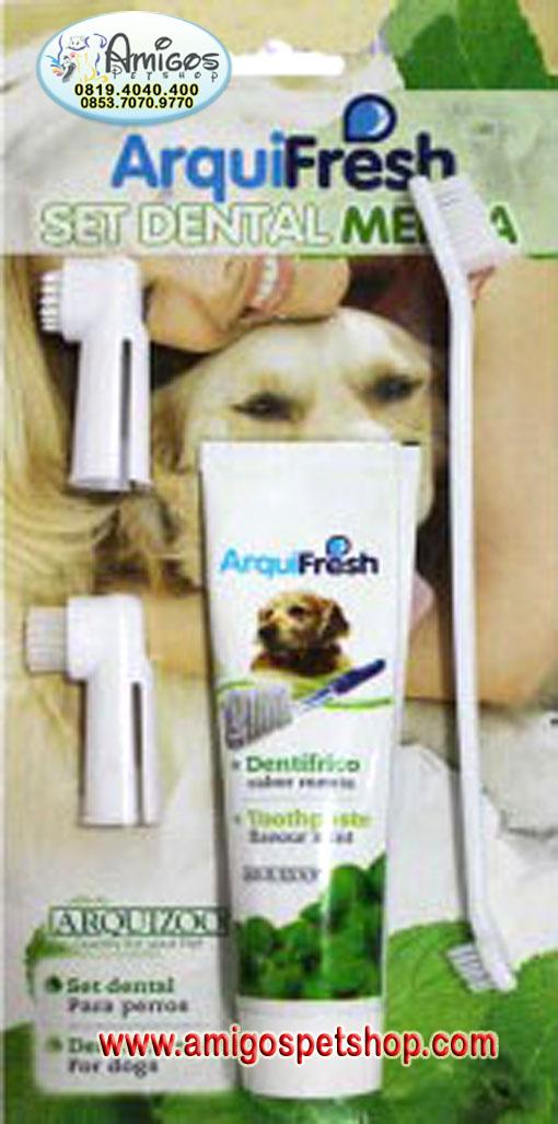 Odol gigi anjing