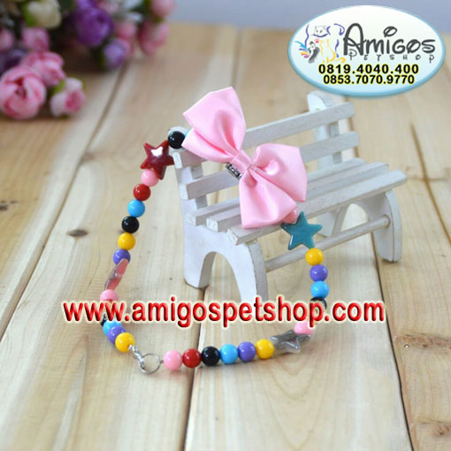 Colorful Acrylic Star Pet